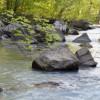 Bellah Creek Camping