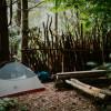 Bush Camp in the Carolinian Forest