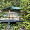 Mossy Mountain Cedar Tent site