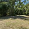 Guadua Camp
