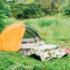 Mossy Turtle Tent Site