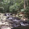 Terania Creek Zen Camping