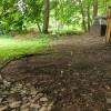 Finger Lakes Tent Site #1