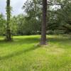 Southern Oak Retreat