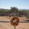 High desert ranch with mtn views