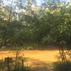 Shoal River Landing Hipcamp