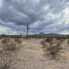Low Desert Land