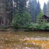 "The ""Elk House"" Cabin"