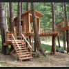 Hawks Nest Treehouse Coming 2022