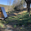 Camping platforms/A frame.meadow