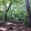 Private Hike In Tent Site- Hawk