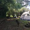 Camp Lexington #4