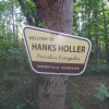 Overlanders haven in the trees!