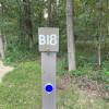 B18 English Pale Campground
