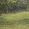 Green acres retreat