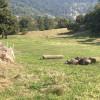 """The Old Hut"" @ Camp Creek Retreat"