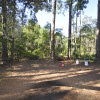 Pine forest, 5 minutes to the beach