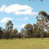 Open Aussie Bushland