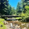 Creekside Retreat near Mt Hood