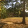 Quiet, Peaceful Getaway in Nature