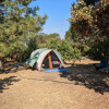 Tent Camping Sites in Fruit Orchard