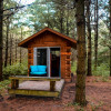 Pine the Sky bunkie in the forest!