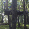 Island with Open Platform Treehouse