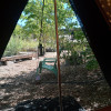 Bell Tent at Wildland Nursery