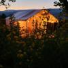 Flower Garden Glamping Tent