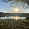 Scaife Pond