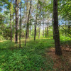 Hideaway in the Woods