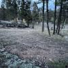 Suna Shack - camping near 285