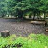 Campsite on private property