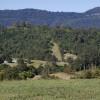 Misty Mountain-Kunghur NSW