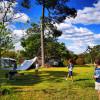 Fame Mountain Camp