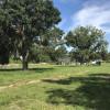 Peaceful Family Farm Campsite