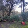 Matilda's Cottage's Side Camp