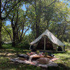 Bell Tent Forest View