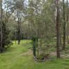 dry rain forest