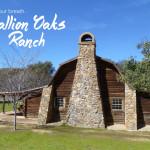 Hipcamper Stallion Oaks