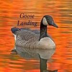 Hipcamper Goose
