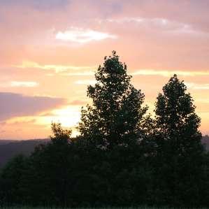Fairy Hill Wild Camping, Chantilly Farm, VA: 37 Hipcamper ...