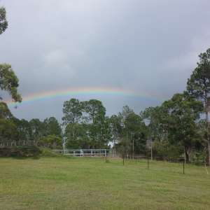 Peace and Tranquility on 10 acres Upper Caboolture