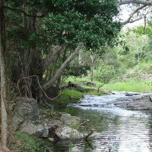 Springvale Eco Park