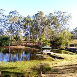 Bundeera Sanctuary