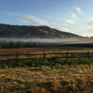 Rivertree Farm