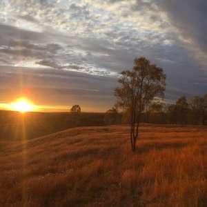 Hiddenvale Hills Farm Hideaway, Queensland