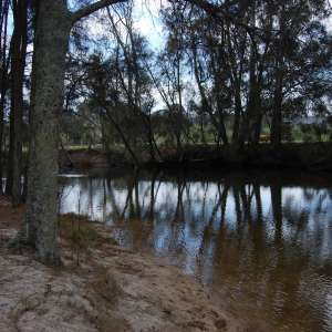 Tomakin River Camping