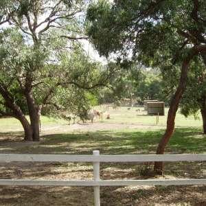 Kiernan Park Equestrian Centre