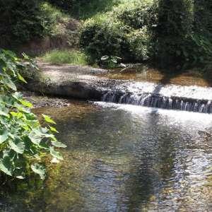 SILVERGUM. Large Private Creekfront Campsites